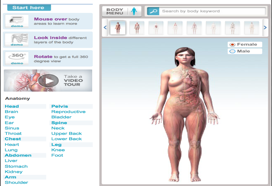 Great Websites To Teach Anatomy Of The Human Body In 3D