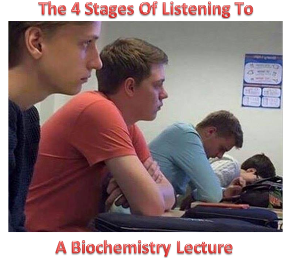 Bio Lecture.png