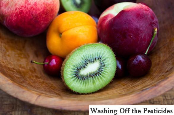 washing off pesticides.JPG