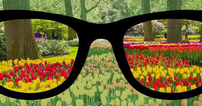 Novel Glasses Can Help The Color-Blind Perceive More Colors | Faculty of  Medicine