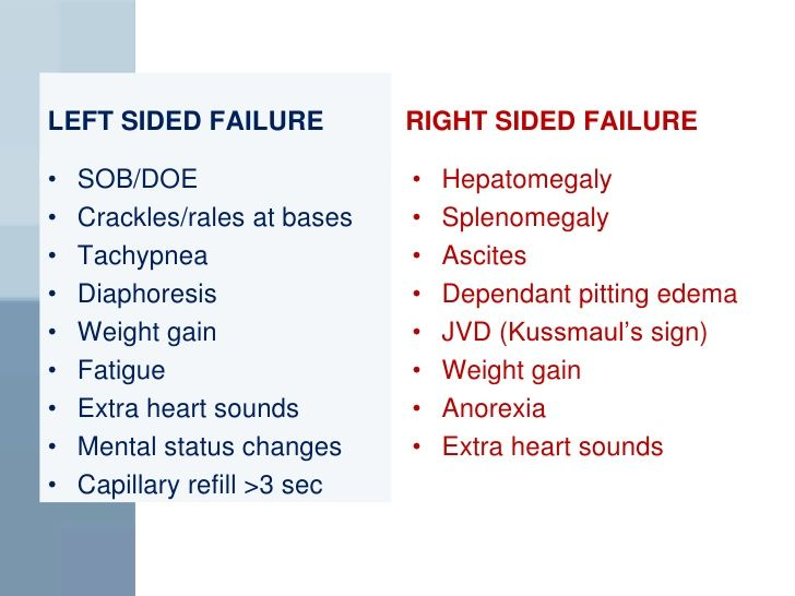Left Vs Right Sided Heart Failure  Faculty Of Medicine. I Need A Loan To Get Out Of Debt. What Is Carpet Made Out Of Hud Closing Costs. Fun Interior Design Games Trade Online Stocks. Current Fixed Annuity Rates Phone Card Swipe. Comcast Key West Customer Service. Best Exercise Science Schools. Mobile Number Network Finder. Benzoyl Peroxide Pregnancy Fedex Direct Mail