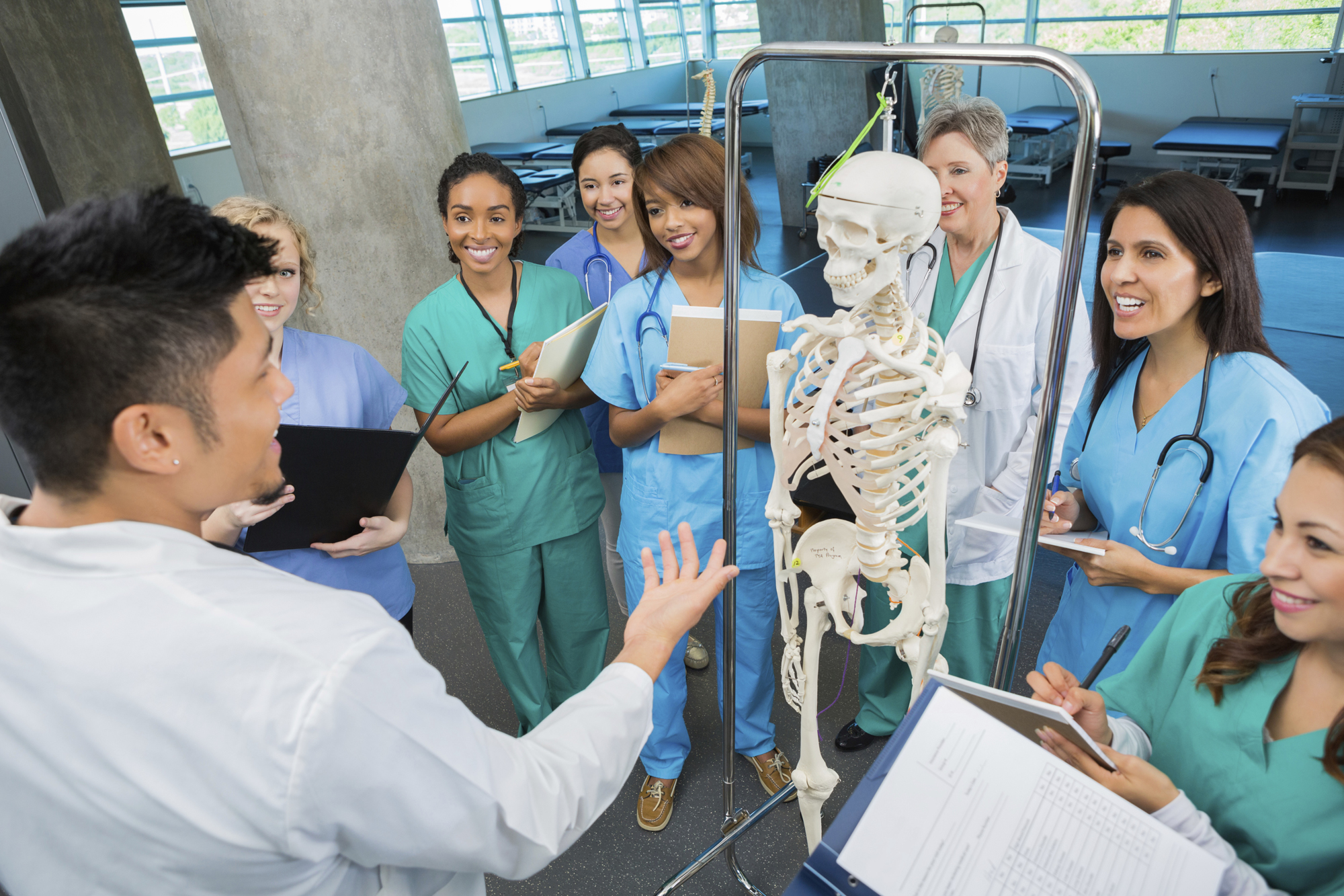 Magic Mirror' Skeletons Teach Med Students Anatomy   Faculty of Medicine