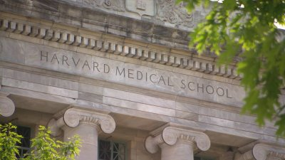 how to get into harvard medical school from uk